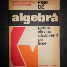 N. GHIRCOIASIU - FISE DE ALGEBRA PENTRU ELEVI SI ABSOLVENTI DE LICEE