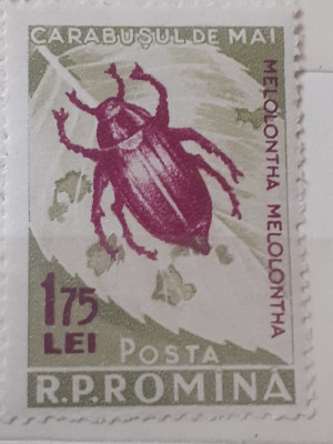 Romania 1956 Lp 413 carabusul de colorado mnh foto