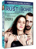 Accidentul / De rouille et d'os / Rust and Bone - DVD Mania Film