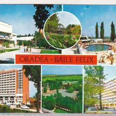 bnk cp Oradea - Baile Felix - Vedere - necirculata