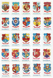 România, LP 994/1979, Stemele municipiilor (A-O; uzuale), MNH, Nestampilat