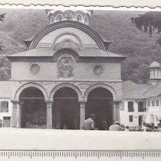 bnk foto - Manastirea Cozia