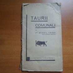 Taurii comunali – Mihail Vaida
