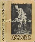 Cumpara ieftin Compendiu De Anatomie - Mircea Ifrim, Gh. Niculescu