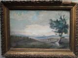 Tablou vechi, ulei / carton, Peisaj, 34 x 22 fara rama, semnat stanga jos, Peisaje, Impresionism