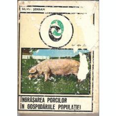 Ingrasarea porcilor in gospodariile populatiei - Silvia Serban