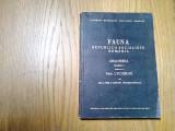 FAUNA R P R*Vol.V, Fasc. 3 - ARACHNIDA - Fam. LYCOSIDAE - I. E. Fuhn -1971, 256p