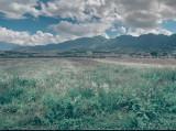 Teren de vanzare in Zarnesti