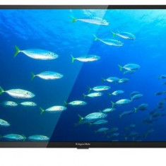 Televizor LED Kruger&Matz 80 cm (32inch) KM0232HD, HD Ready, CI+