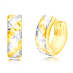 Cercei rotunzi din aur de 14K - linii bicolore mate și o grilă strălucitoare