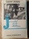 JURNALUL DE LA PALTINIS-GABRIEL LIICEANU