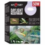Bec REPTI PLANET Daylight Neodymium 50W