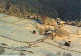 Carte postala Bucovina SV174 Paltinu -La capatul iernii