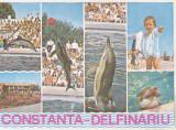 bnk cp Constanta - Delfinariu - Vedere - necirculata