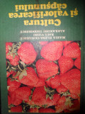 Cultura Si Valorificarea Capsunilor - Maria Elena Ceausescu Raul Vieru Alexandru Teodore,548596