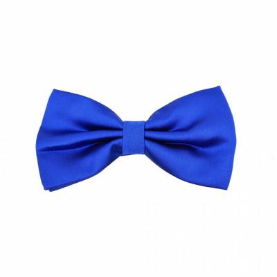 Papion albastru elegant Arouet foto