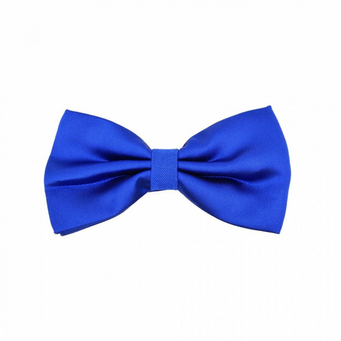 Papion albastru elegant Arouet