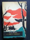 Pe urmele Zimbrului- Victor Eftimiu