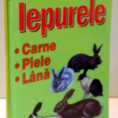 IEPURELE CARNE PIELE LANA , 2001