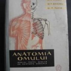 Anatomia omului-V.Ranga