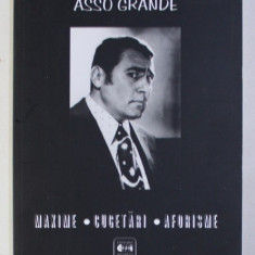 MAXIME , CUGETARI , AFORISME de ASSO GRANDE , 2007