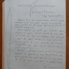 Manuscris olograf Geo Bogza , Albatrosul ; Tulnic , 2 pagini , semnatura celebra