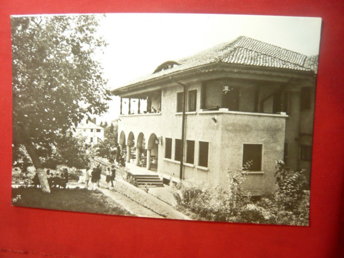 Ilustrata Campina - Casa Pionierilor , anii '60