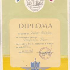 bnk div - Diploma Evidentiat in munca 1969