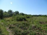 Teren arabil Găgești - Bolotești, Vrancea., Teren extravilan