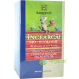 Ceai Incearca! 20 de Sortimente Ecologic/Bio 20dz