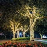 Cumpara ieftin Ghirlande Luminoase Copaci, 23 m, de Exterior/Interior, Instalatii luminoase copaci