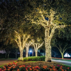 Ghirlande Luminoase Copaci, 23 m, de Exterior/Interior, Instalatii luminoase copaci