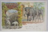 A.D XENOPOL CATRE ELIZA XENOPOL *, CARTE POSTALA ILUSTRATA , CROMOLITOGRAFIE , CIRCULATA , CLASICA , 1902
