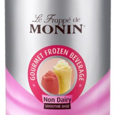 Frappe Pudra Monin Neutral - Non Dairy 2 KG