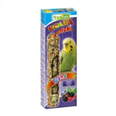 Hrana pentru perusi cu fructe de padure, Nestor, 1 stick, 85 g
