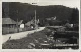 Busteni Valea Alba carte postala, Circulata, Printata