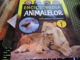 Enciclopedia animalelor vol 1 h 29