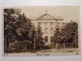 BUCURESTI - MUZEUL ZOOLOGIC - INCEPUT DE 1900