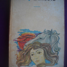 HOPCT  DINCOLO / JOHN GALSWORTHY  -1974 - 295   PAGINI