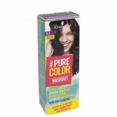 Vopsea de par temporara sub forma de gel hidratant, Pure Color Washout 5.1 Saten fumuriu, 60 ml