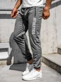 Pantaloni de trening gri bărbați Bolf CE010
