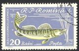 Cumpara ieftin EROARE -- ROMANIA -1960 --20 Baini --- Perfecta --lux