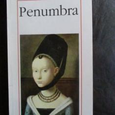 Penumbra-Andrei Cornea