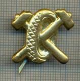 Y 1825 INSIGNA - MILITARA -SEMN DE ARMA - AUTO  -PENTRU COLECTIONARI