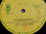 Lucretia Ciobanu - Raritate (EPC305/Electrecord) - Vinil/format mic - 33 rpm/VG