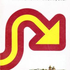 Dambovita ghid turistic al judetului, de Gabriel Mihaescu, Const. Manolescu si Ion Zavoianu