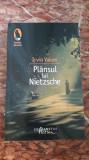 Plansul lui Nietzsche - Irvin D. Yalom