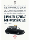 Dumnezeu explicat intr-o cursa de taxi   Paul Arden, Art