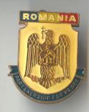 Insigna militara Romania Partenership for Peace