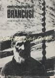 Omagiu Lui Brancusi - Centenar Brancusi 1976 Tribuna - Dumitru Radu Popescu